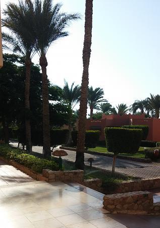 Нажмите на изображение для увеличения Название: Шарм-Эль-Шейх улицы.jpg Просмотров: 125 Размер:94.7 Кб ID:1101