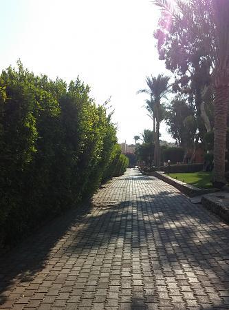 Нажмите на изображение для увеличения Название: Город Шарм-Эль-Шейх.jpg Просмотров: 25 Размер:96.4 Кб ID:1100