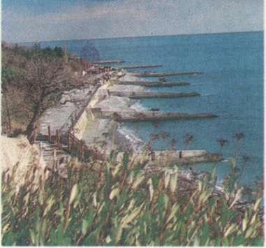 Название: Крымский берег.jpg Просмотров: 142  Размер: 19.1 Кб